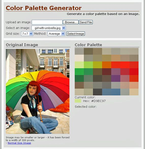 color palette from picture