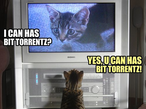 4 Torrenting Pitfalls to Avoid and What to Do Instead