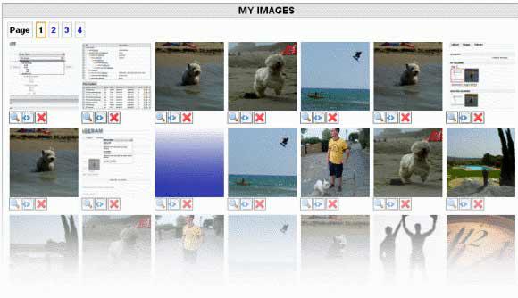 unlimited image hosting