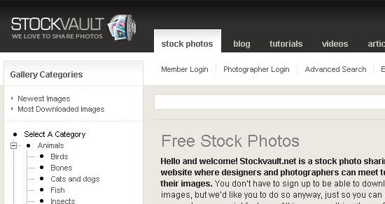 stock photo sharing