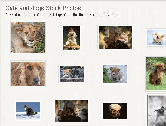 image220   StockVault: Download Free Stock Photos