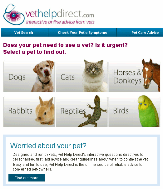 vethelpdirect   VetHelpDirect: Diagnose Your Pets Symptoms Online