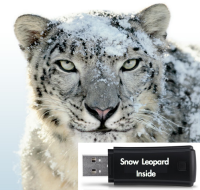 Upgrading Mac To Snow Leopard Using USB drive