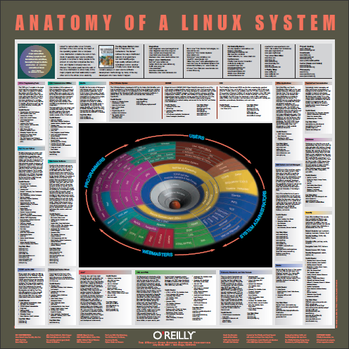 14 Application Cheat Sheets & Posters for Popular Programs anatomy
