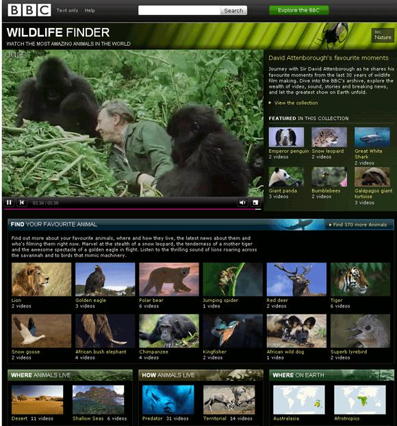 watch wildlife videos online