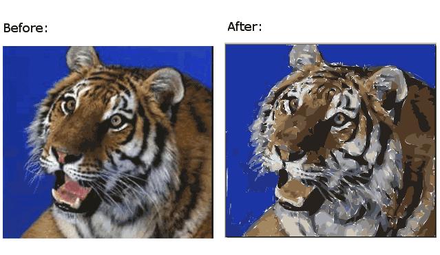 make vector graphics