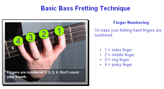 electric bass guitar lessons online