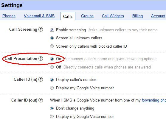 how does google voice work