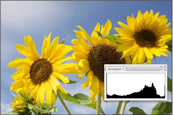 How To Read Your Camera's Histogram And Take Perfectly Balanced Images betterdistribution