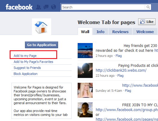 top fans page facebook application
