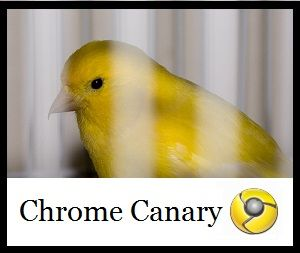What Google Chrome Canary Is [Technology Explained]