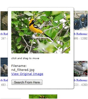 find similar images