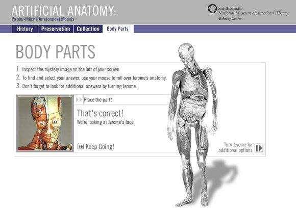 interactive anatomy