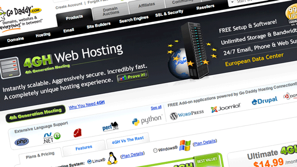what is a web hosting company