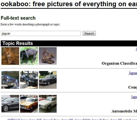 intelligent image search