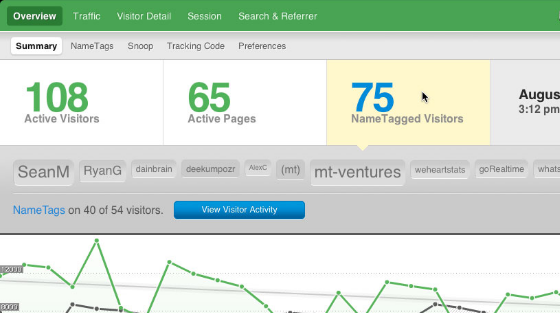how to track visitors on website