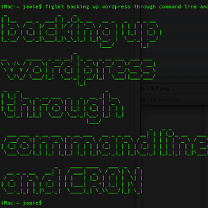 Automate Your WordPress Backup With Simple Shell Scripting & CRON