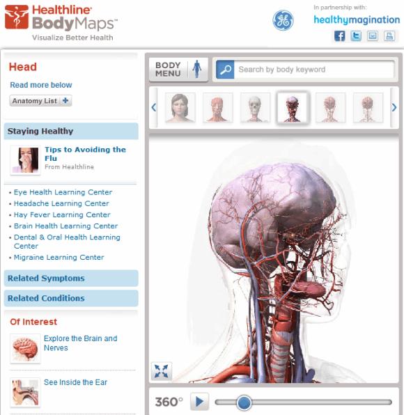 3d human body online