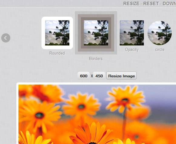add effects to digital photos