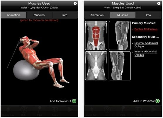 iMuscle: An Exercise App That Demonstrates Muscle Activity Through High Quality 3D Animations [iOS] muscleused