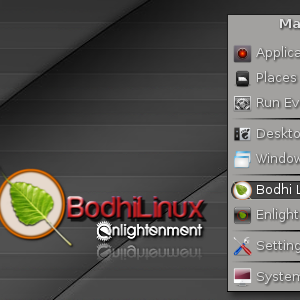 Bodhi Linux Is Beautiful & Works On Very Old Computers [Linux]