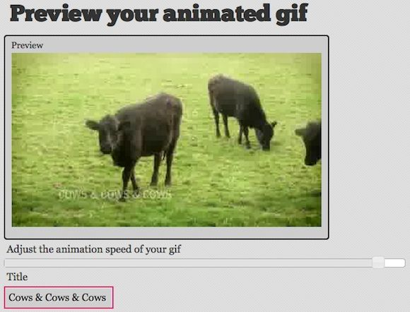 convert youtube video to gif