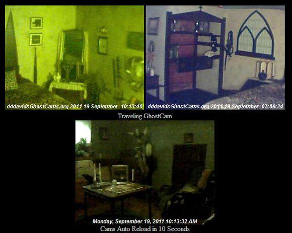 Free live web cameras
