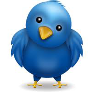 4 Reasons I Don't Like Twitter And Why I Joined Anyway [Opinion]