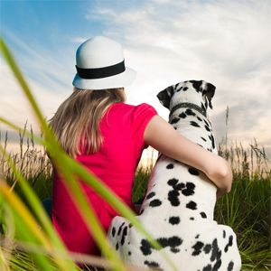 5 Best Animal Rescue Sites To Find Your Next Pet