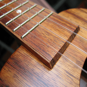 5 Fantastic Resources on the Web for Ukulele Players