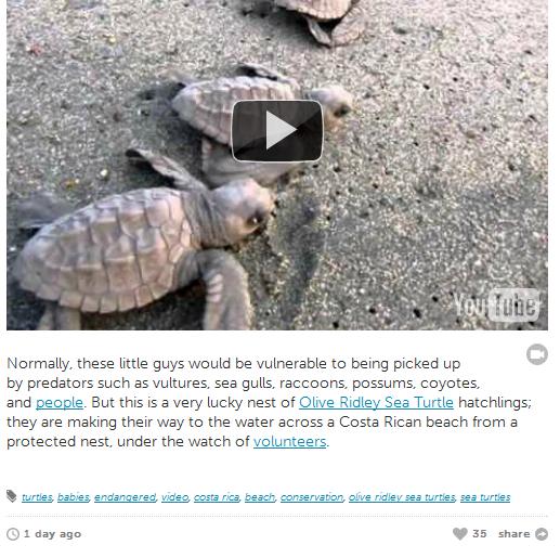 informative videos for kids