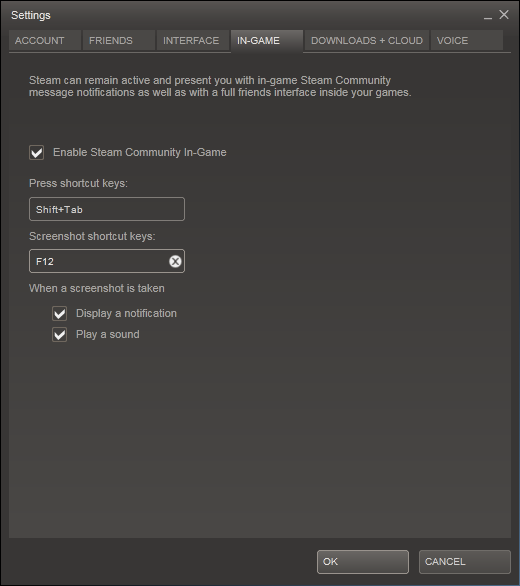 Configuring a shortcut key for screengrabs in Steam
