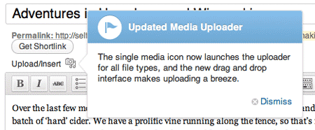 What's New In WordPress 3.3 ? single upload button