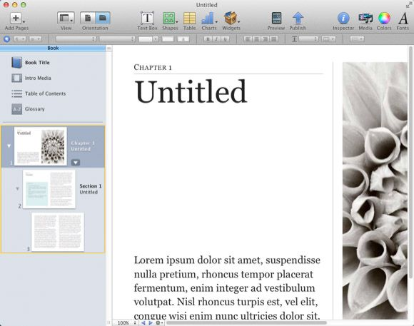 ibooks author page