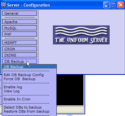 your own web server
