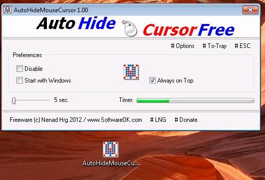 hide the mouse cursor