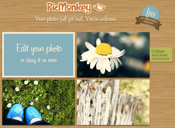 picmonkey 4   Picmonkey: Sleek & Fast Photo Editor Running On Flash