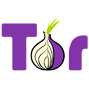 How the Tor Project Can Help You Protect Your Own Online Privacy