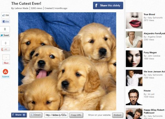 Cutestever   Slidely: Easily Create Musical Slideshows From Your Online Images