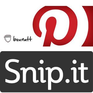 Pinterest, Snip, Boxnutt: Does Style & Purpose Make A Difference?