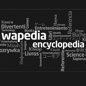 How I Use Wapedia For Reference And Wikipedia Search When I Am Stuck [Android 1.5+]