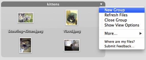 organize files mac os