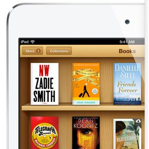 A Beginner's Guide to Setting Up an Ebook Library on iPads