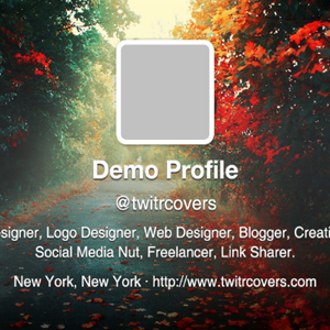 TwitrCovers Helps You Find The Perfect Cover Image For Your Twitter Profile For Free