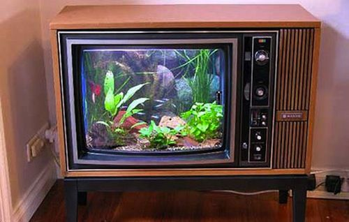 10 Great Geek Hacks: Repurpose Everyday Objects & Get The Most Out Of Your Electronics TV fish tnk