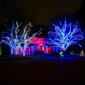 Animated Christmas Light Displays
