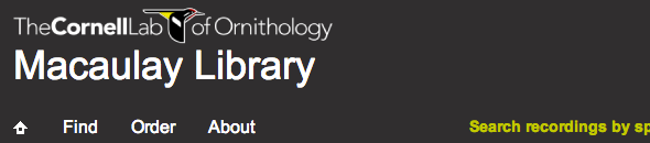 banner   Macaulay Library: Listen To The Worlds Largest Collection Of Wildlife Sounds