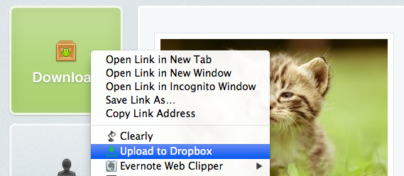 download-to-dropbox