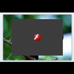 How to Stop Flash From Loading Automatically With FlashControl [Chrome]