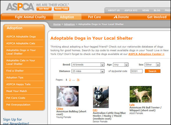 10 Puppy Finding Services To Find Your Next Best Friend ASPCA